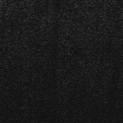 Masland Silk Touch Dark Of Night 9515727