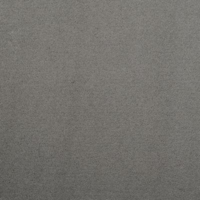 Masland Silk Touch Steel 9515836