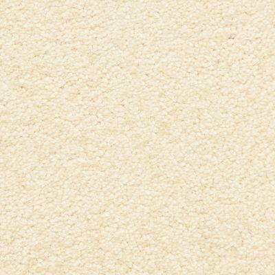 Masland Sugar Sand 9550037