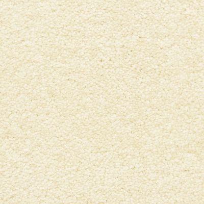 Masland Seed 9550059