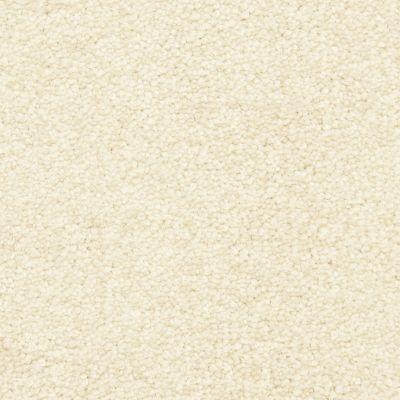 Masland Pillar 9550066