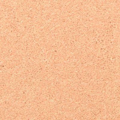 Masland Clay Pot 9550302