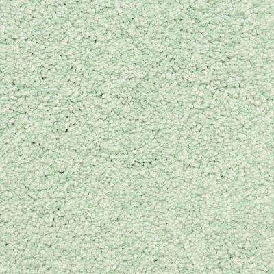 Masland Spray 9550584