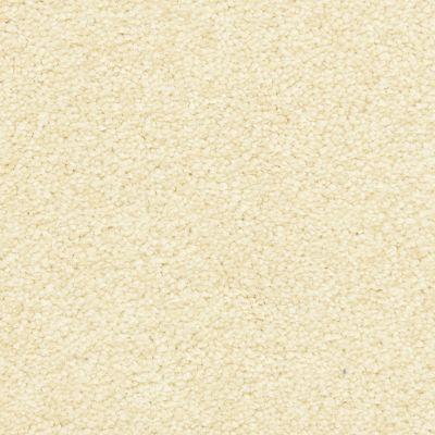 Masland Bavarian Cream 9551143