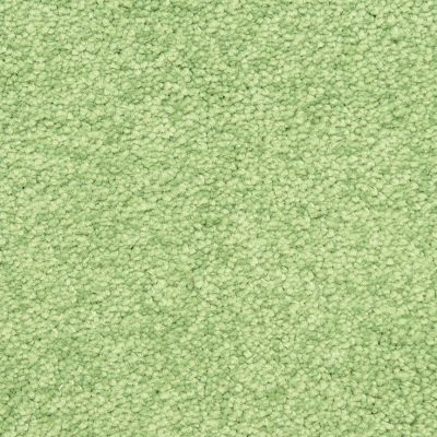 Masland Liming 9551512