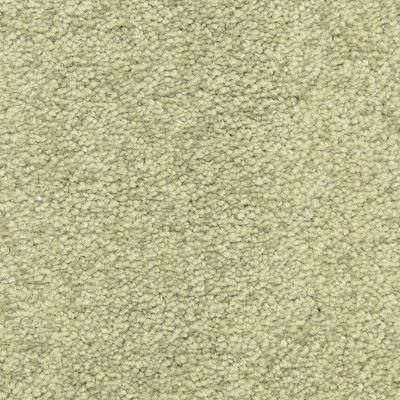 Masland Spanish Moss 9551553