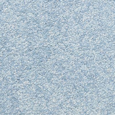 Masland Blue Jay 9551646