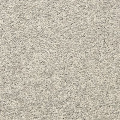 Masland Falcon Grey 9551855