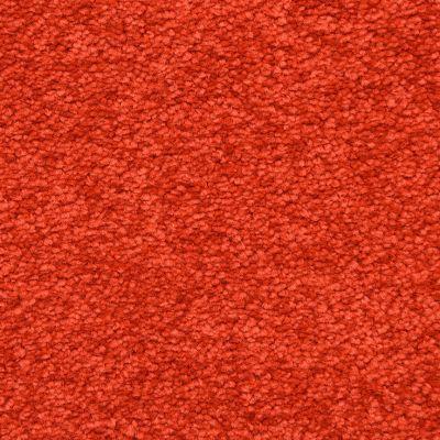 Masland Red Hot 9551911