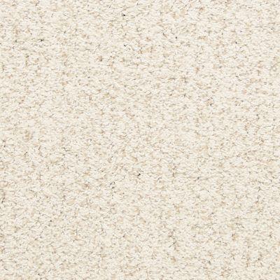 Masland Conch 9556039
