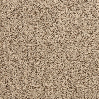 Masland Driftwood 9556328