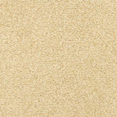 Masland Ginger Snap 9557434