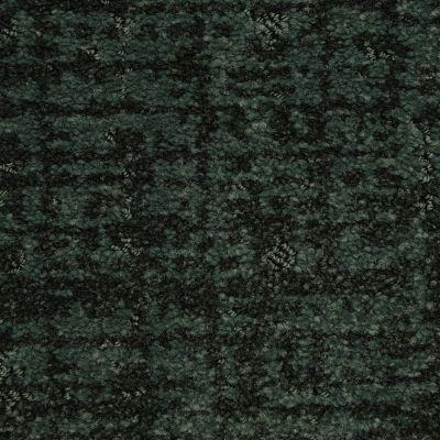 Masland Forest 9565599