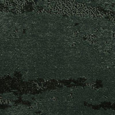 Masland Forest 9566599
