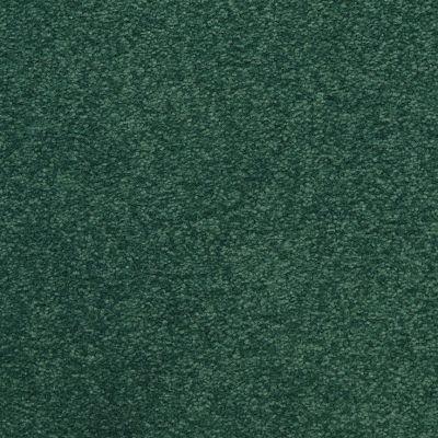 Masland Patriot Visual 9588548