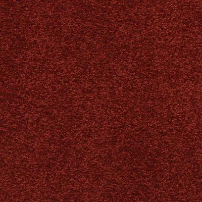Masland Vibrant 9588945