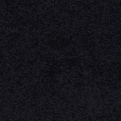 Masland Knockout After Midnight 9615901