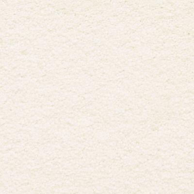 Masland Ravishing Tantalizing 9625016