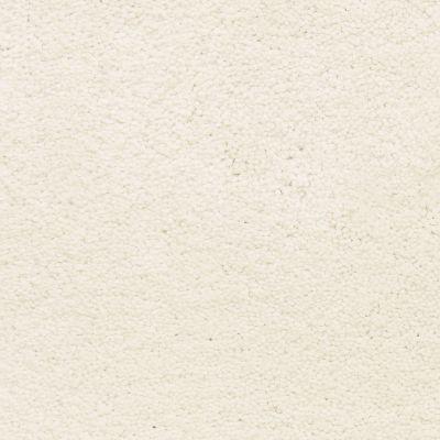 Masland Ravishing Glamorous 9625021