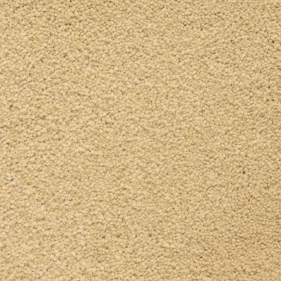 Masland Ravishing Gorgeous 9625305