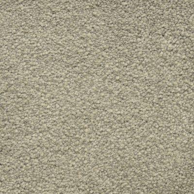 Masland Ravishing Amazing 9625533