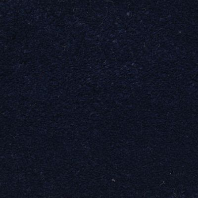 Masland Ravishing Tempting 9625640