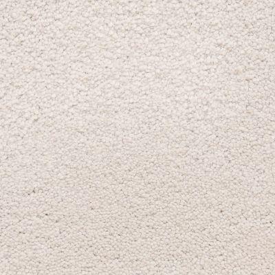Masland Ravishing Radiant 9625826