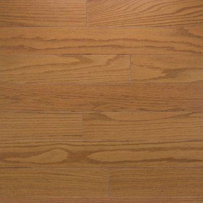 Somerset Color Strip Golden Oak CLRSTLDNK