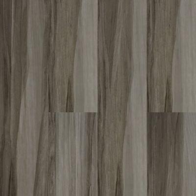 Dolphin Carpet & Tile Hensa Gris HAHENGRI9X48