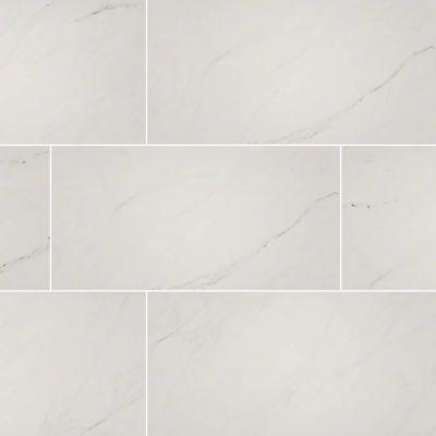 MSI Tile Aria Stone Ice NARICE2X4P