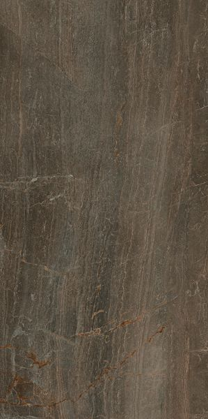 Paramount Tile Fossil BRUNO MD1066582
