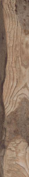 Paramount Tile Backwoods LEATHER SADDLE MDMTG0636160