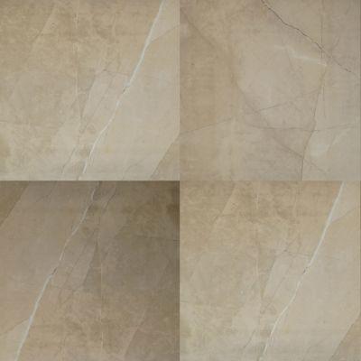 Dolphin Carpet & Tile Sande Polished Cream 24 X 24 MSSANCRE24