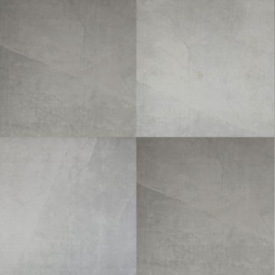 Dolphin Carpet & Tile Sande Polished Grey 24 X 24 MSSANGRE24