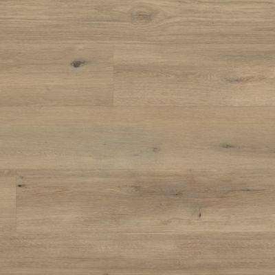 Karndean Canadian Urban Oak RKP8116US