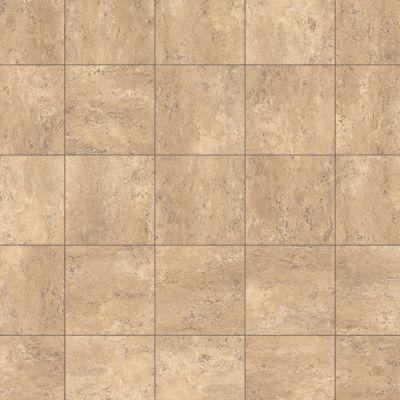 Karndean Knight Tile ona Stone T99