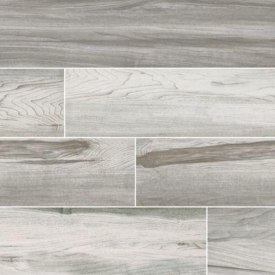 MSI Tile Carolina Timber Wood White NCARTIMWHI6X24-N