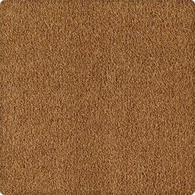 Karastan True Colors Golden Tapestry 1Y84-9168