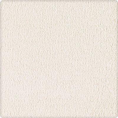 Karastan Indescribable Untouched Canvas 43495-9717