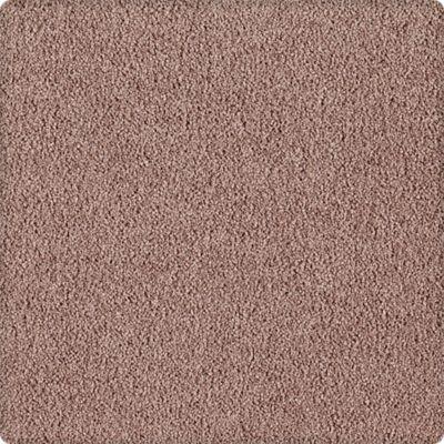 Karastan Indescribable Bitter Brown 43495-9844