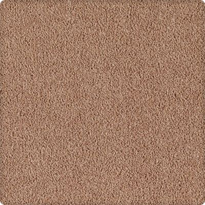 Karastan Indescribable Warm Neutral 43495-9847