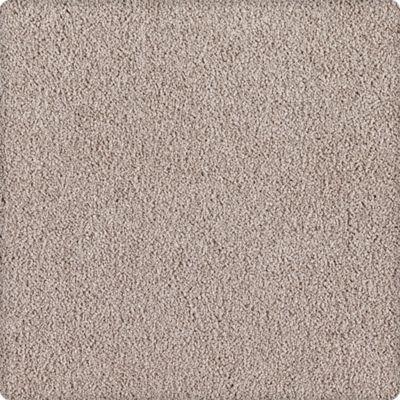 Karastan Indescribable Gorgeous Greige 43495-9859