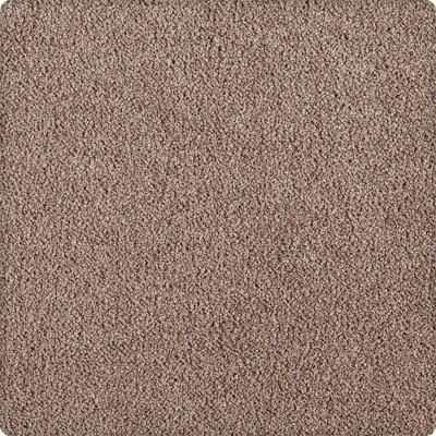 Karastan Indescribable Crisp Texture 43495-9868