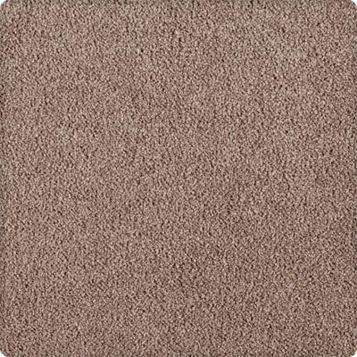 Karastan Indescribable Crisp Texture 43495-9868