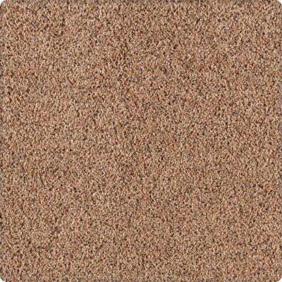Karastan Unprecedented Spiced Cider 43503-9762