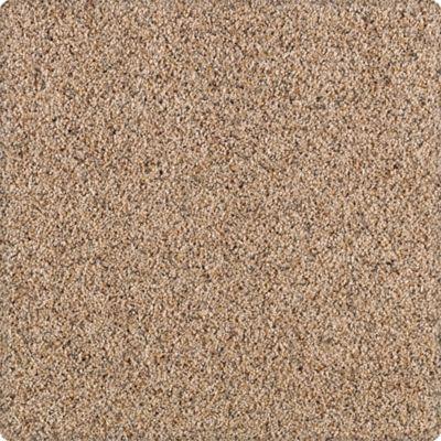 Karastan Unprecedented Roasted Chestnut 43503-9858