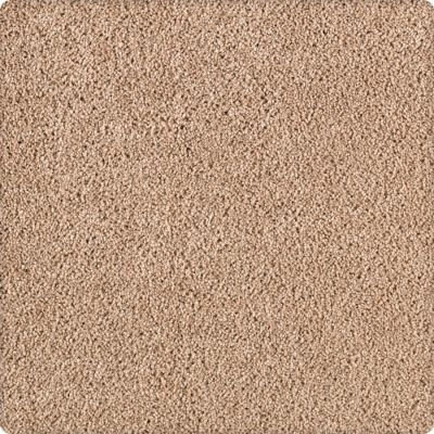 Karastan Simply Spectacular Whole Grain 43504-9748