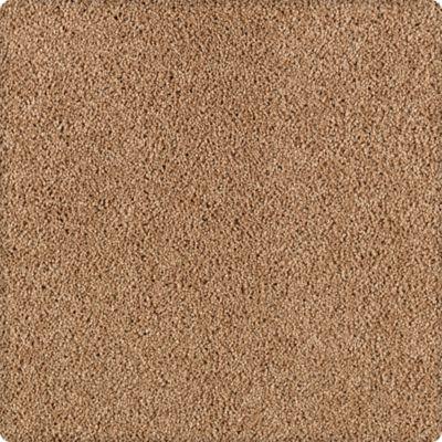 Karastan Simply Spectacular Chamois Cloth 43504-9841