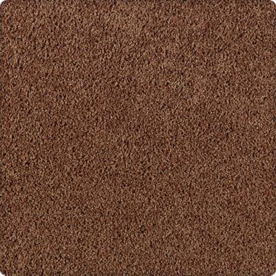 Karastan Simply Spectacular Cigar Leaf 43504-9862