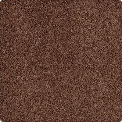 Karastan Simply Spectacular Spiced Tea 43504-9882